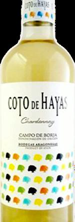 Carpediem - Coto de Hayas - Chardonnay